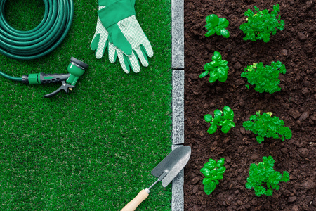 Gardener tools on the grass, plants growing and fertile soil, farming and gardening concept