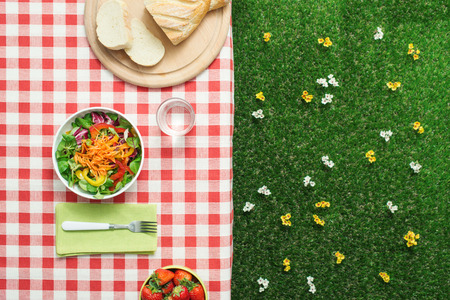 Picnic setting: fresh salad bowl on a checked tablecloth