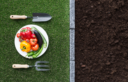 Conceptual table set with vegetables on a dish, fork, shovel on the grass and fertile humus soil, agriculture and healthy eating concept