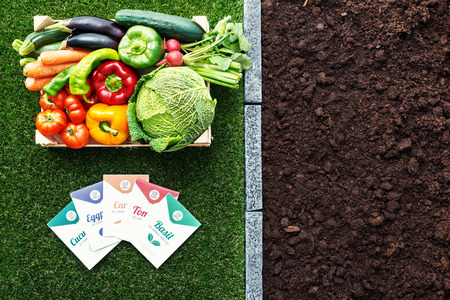 Top quality vegetables seeds packets and wooden crate with freshly harvested vegetables, farming and gardening concept