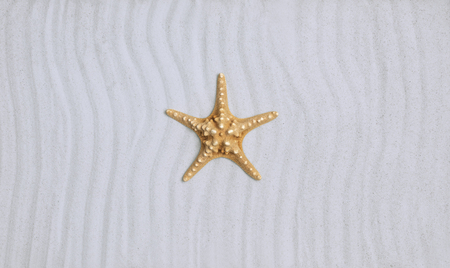 Starfish on a clean tropical beach, vacations and summer concept Stock Photo
