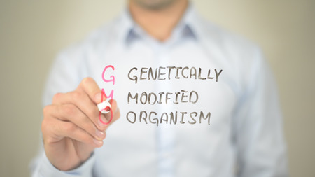 gmo genetically modified organism , Man writing on transparent screen Stok Fotoğraf
