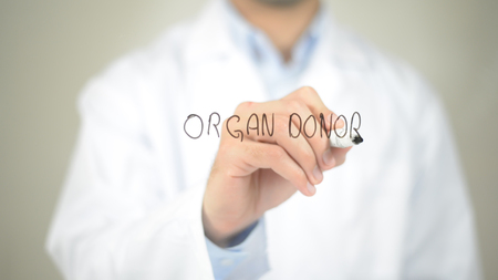 Organ Donor , Doctor writing on transparent screen Stock Photo