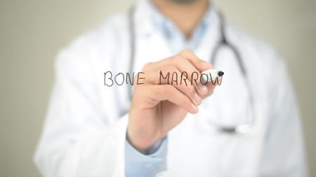 Bone Marrow , Doctor writing on transparent screen 스톡 콘텐츠
