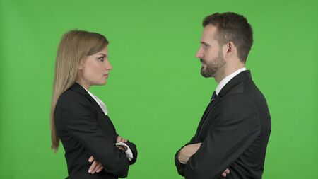 The Male and Female Professional Looking at each other Against Chroma Key