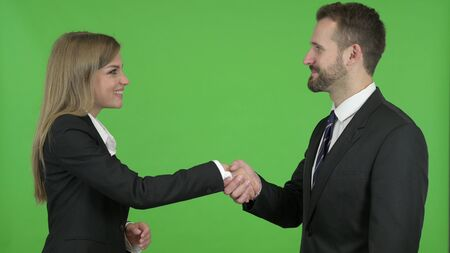 The Male and Female Business Professionals Shaking Hands Against Chroma Key
