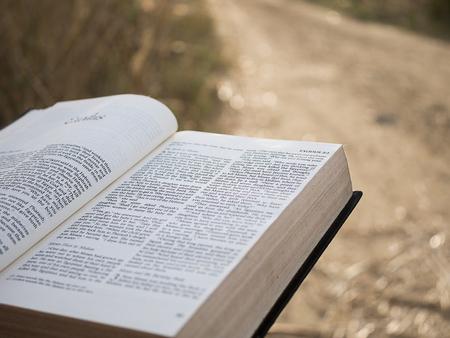 Tekst w księdze świętej biblii Zdjęcie Seryjne