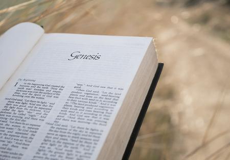 성서 창세기 스톡 콘텐츠