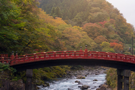 Shinkyo bridge and stream in autumn tree, beautiful nature.