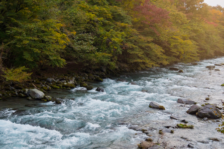 River and stone, landscape with autumn forest. Stock Photo