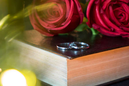 Wedding rings and rose on book with bokeh lights in foreground.
