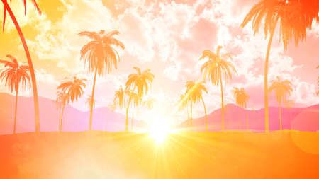 Summer tropical with sky sunset and coconut tree Фото со стока