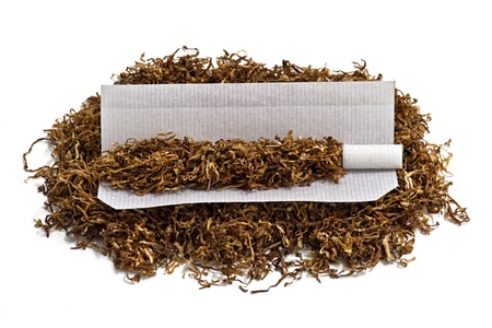tobacco plants: Rolling cigarette and tobacco