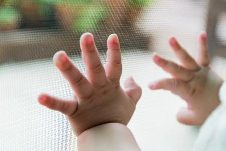 Bébé main et moustiquaire