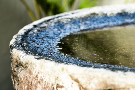 a close up of the side of a dirty bird bath with clear water in it Фото со стока