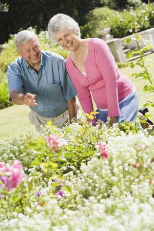 Senior couple working in garden photo