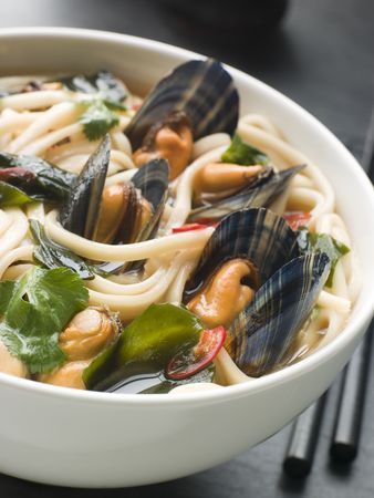 Mussels and Udon Noodles in Chili Soy Broth Stock Photo - 3131481