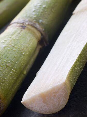 Fresh Sugar Cane Split in Half Stock Photo - 3131683