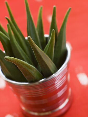 Pot filled with Okra Stock Photo - 3131665