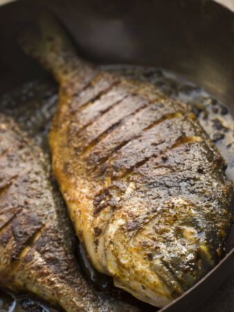 Emperor Bream Roasted with Tikka spices Stock Photo - 3131772