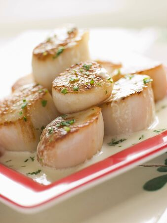 Seared Scallops with Cava Cream and Herb Sauce Stock Photo - 3135305