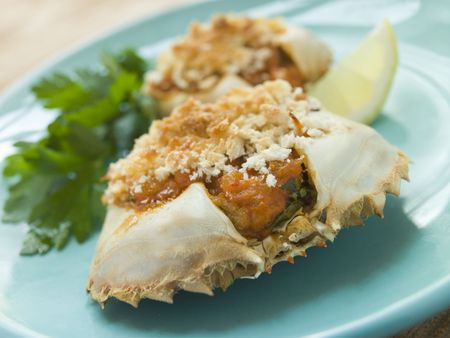 plated: Plated Txangurro-Stuffed Crabs Stock Photo