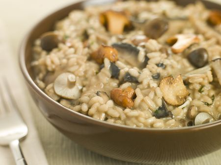 Bowl of Wild Mushroom Risotto Stock Photo - 3181279