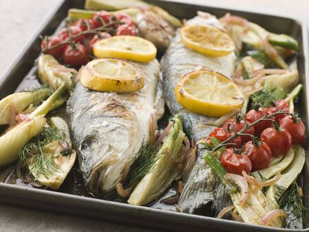 fennel: Whole Sea Bass Roasted with Fennel Lemon Garlic and Cherry Tomatoes on the Vine Stock Photo