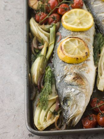 крупные планы: Whole Sea Bass Roasted with Fennel Lemon Garlic and Cherry Tomatoes on the Vine Фото со стока
