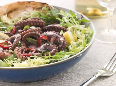 Octopus Salad with Frisse Roquette and Chargrilled Bread photo