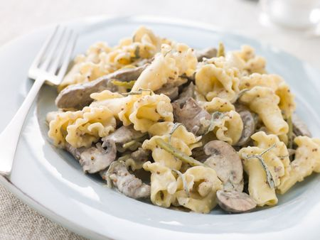 Campanelle Pasta with Beef Fillet Strips in a Sage and Grain Mustard Sauce photo