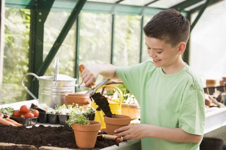 cress: Young boy in greenhouse putting soil in pot smiling