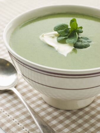 berros: Bowl de Watercress Soup con Cr me fraiche  Foto de archivo