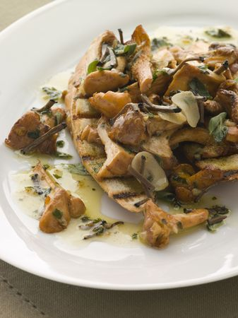 Wild Mushrooms Sauteed in Garlic Butter with Char grilled Baguette and Black Truffle photo