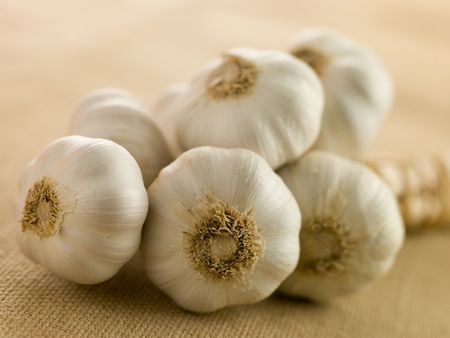 ail: Bulbs of Garlic Stock Photo