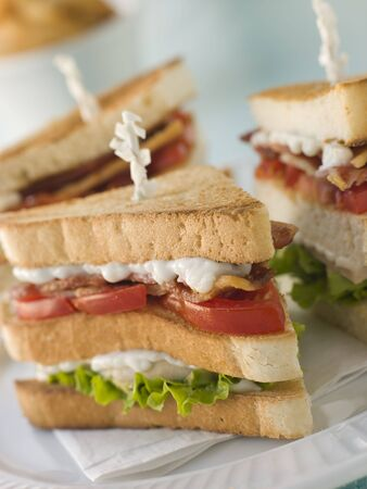 Toasted Triple Decker Club Sandwich with Fries photo