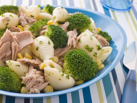childrens meal: Tuna and Broccoli Pasta Shells