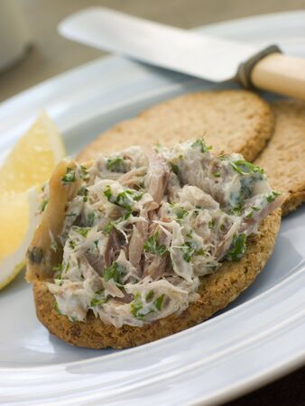 Cornish Smoked Mackerel Pate with Oatmeal Biscuits Stock Photo - 3443688