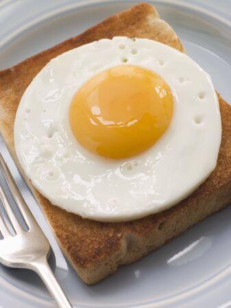 huevos fritos: Huevo frito sobre blanco brindis