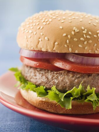 Beef Burger in a Sesame Seed Bun photo