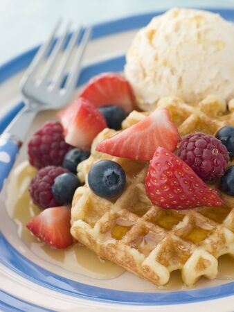 Sweet Waffles with Berries Ice Cream and Syrup Stock Photo - 3600153