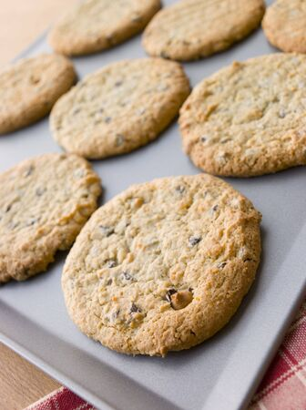 Tray of Chocolate Chip and Hazelnut Cookies Stock Photo - 3600351
