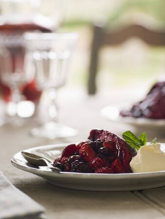 Summer Pudding with Clotted Cream Stock Photo - 3476381