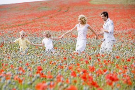 poppy field: Familie wandelende papaverbolkaf gebied holding hands smiling