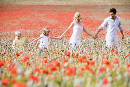 Family walking in poppy field holding hands smiling photo