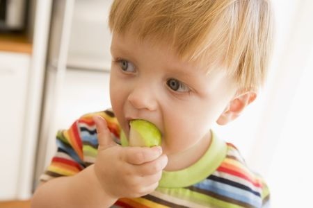 24 month old: Young boy eating apple indoors Stock Photo
