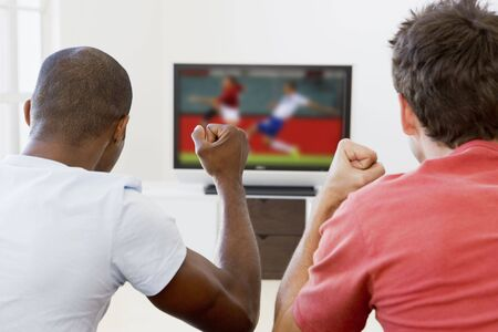 lcd tv: Two men in living room watching television and cheering