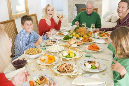 Family All Together At Christmas Dinner Stock Photo - 3726525