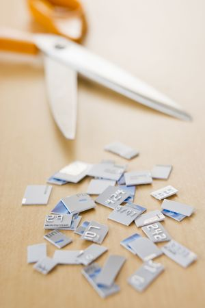 Credit Card In Pieces photo