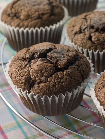 Chocolate Chip Muffins On A Cooling Rack Stock Photo - 4426459